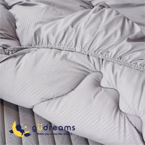 güdreams 祝你好夢銀離子組合-標準雙人5x6.2尺(152x188cm)