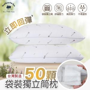 台灣製造 超回彈袋裝獨立筒枕/單顆【BD】